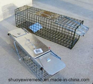 OEM Collapsible Large Metal Wire Mesh Live Animal Trap Cage pictures & photos