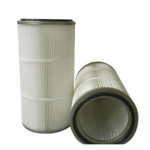 Polyester Cartridge Filter for Vacuum Cleaner in Special Painting Field pictures & photos