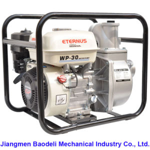 Home Use Hydraulic Water Pump (WP30) pictures & photos