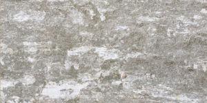 300*600 Interior Wall Tiles, Matt Rustic (PM36200) pictures & photos
