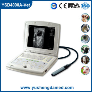 Ysd4000A-Vet Ce Approved Digital Laptop Veterinary Ultrasound Machine pictures & photos