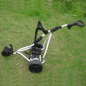 CE Mini Green Power Electric Utility Vehicle Golf Trolley (DG-12150-A/1) pictures & photos