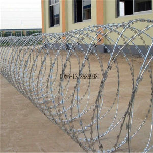 High Quality with Low Price Concertina Razor Barbed Wire pictures & photos