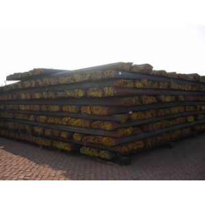 HRB335 HRB400 HRB500 Hot Rolled Rebar in Coil for Construction