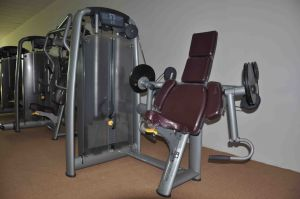 Gym Exercise Equipment/Brilliant Black Leg Curl/Commercial Gym pictures & photos