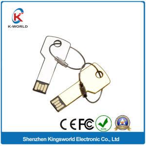 Expert 2GB Metal Key USB Flash Disk pictures & photos