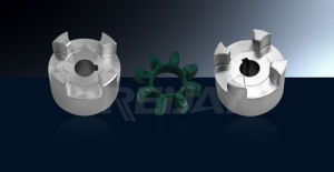 Reijay High Precision Spider Coupling