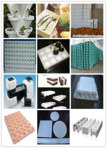 Fangyuan EPS Foam Box Making Machinery pictures & photos
