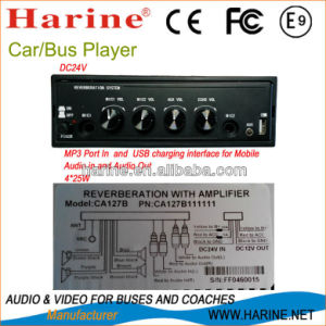 Best Car Audio Stereo Digital Amplifier pictures & photos