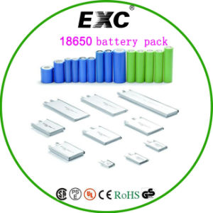 Rechargeable 18650 Li-ion Battery Pack Bluetooth Lithium Polymer Battery pictures & photos