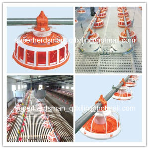 High Quality Automatic Poultry Equipment for Breeder House pictures & photos