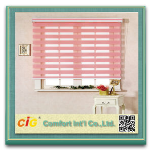 High Quality Indoor Natural Colour Blind Zebra Roller Curtain pictures & photos