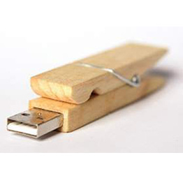 Wood Bamboo Eco USB Flash Drive USB2.0 Logo Customized pictures & photos