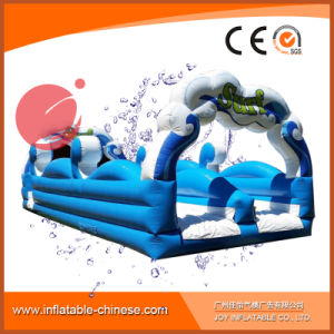 Inflatable Water Slide Slides for Adults with Double Lane (T11-011) pictures & photos