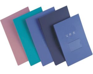 High Quality Bill Lever File Folder for Office and Office pictures & photos