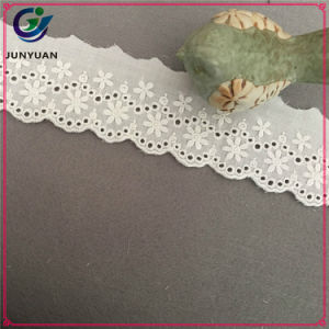 Manufacturers Selling Cotton Cloth Embroidery Lace pictures & photos