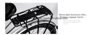 Fat Tire Bicycle/Hl 141 Mechanical 26*17′′ Bike/Travel Bike pictures & photos