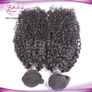 Indian Kanekalon Braid Hair Kinky Curly Remy Human Hair Weave pictures & photos