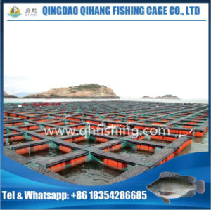 Low Cost Fish Breeding Equipment, Fish Cage Floating pictures & photos