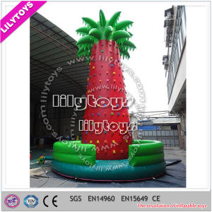 Ce Outdoor Giant Inflatable Climbing Wall for Kids pictures & photos