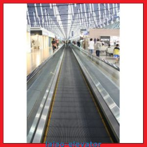 12 Angel and 800mm Pallets for Moving Walkway pictures & photos