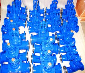 DIN Bw Ends Bellows Globe Valve for Thermo Oil System pictures & photos