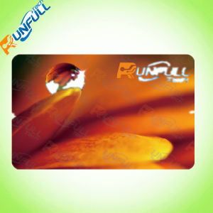 Standard Size PVC Hotel Key Card pictures & photos