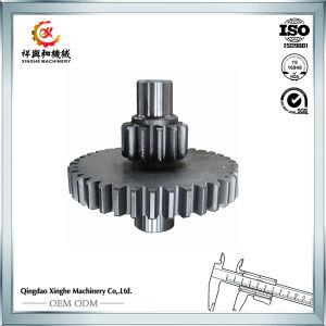 OEM Metal Parts Manufacturer Excavator Gear Worm Gear pictures & photos