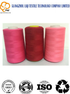 Red Sewing Machine Embroidery Textile Sewing Thread 120d/2 pictures & photos