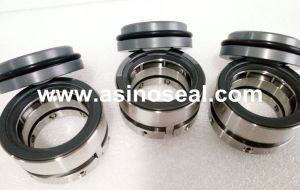 Multiple Spring Mechanical Seal as-Ssai Replace AES Ssai Seal pictures & photos