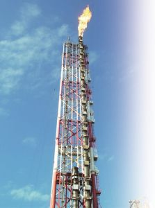 Large Scaled Elevated Flare Stack pictures & photos