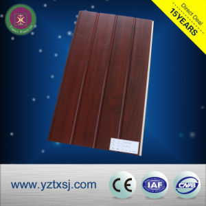 China Plastic Wood Composite WPC Factory Wall Panel pictures & photos