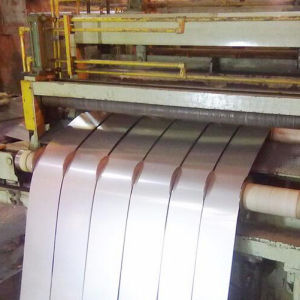 200 Series Stainless Steel Any Model Strips pictures & photos