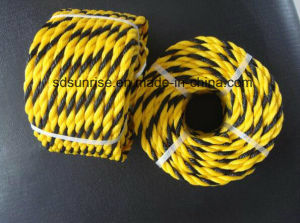 PE Safety Rope for Southeast Asian Market pictures & photos