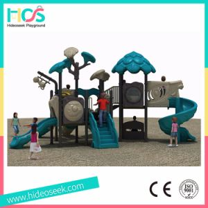 Amusement Park Commercial Outdoor Playground for Children with Slide (HS09801) pictures & photos