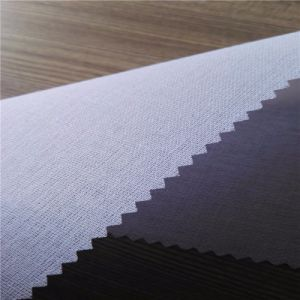 80% Polyester Woven Fusible Interlining for Cap pictures & photos