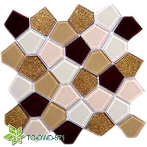 Floor Glass Mosaic (TG-OWD-571) pictures & photos