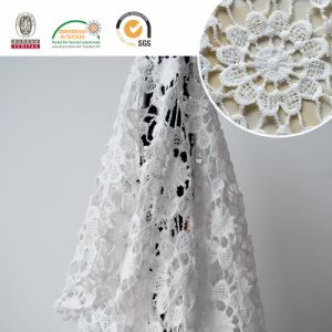 Cheap Lace Fabric with Good Quality for Garment E20038 pictures & photos
