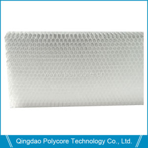 High Transparency PC Honeycomb Panel pictures & photos