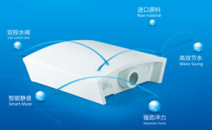 Wall Hung Flushing Cistern for Squat Toilet pictures & photos