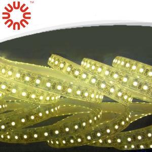 High Brightness SMD3528 SMD2835 SMD5050 SMD5630 24V Flexible LED Strip pictures & photos