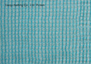 HDPE Olive Net (Harvesting Net) pictures & photos