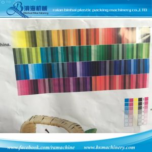 8 Color Flexographic Printing Machine pictures & photos