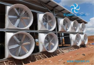 "High Quality and Efficiency GF 72"" Exhaust Fan for Livestock and Industry Application! pictures & photos"