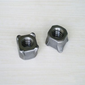 Square Weld Nuts DIN928 Gr6 Plain pictures & photos