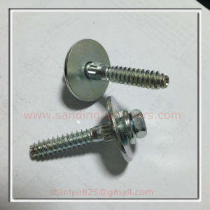 Carbon Steel Zinc Plated Hex Head Bolt with Spring Washer with pictures & photos