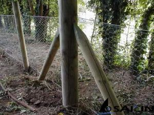 Sailin Hexagonal Wire Garden Fence pictures & photos