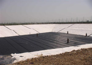 Two Cloth One Membrane Compound Geomembrance (impermeable composite membrane) pictures & photos