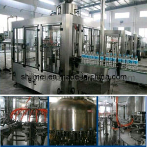 Complete Juice Production Line pictures & photos