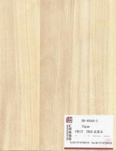 Decorative Paper (HB-48066-3)